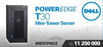 Dell PowerEdge T30 Tower Server